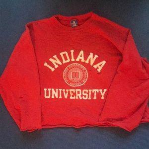 Cozy Indiana University Sweatshirt